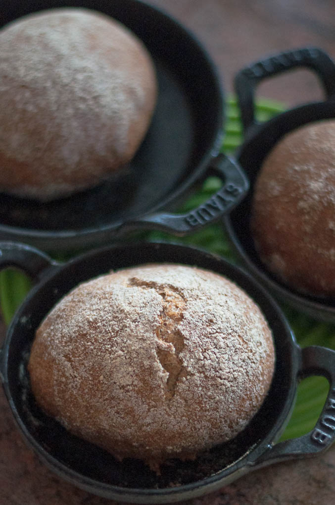 100% Sprouted Wheat No Knead Bread ROLLS! - The Scratch Artist